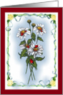 Any Occasion, Blank Inside: Daisies, Ladybugs, Floral, Nature card