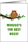 For Boss - Boss's Day Card-Owl Sitting on Tree Branch card