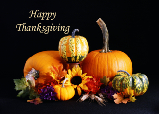 Thanksgiving Card with Pumpkins, Gourds and Sunflower Greeting Card