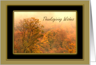 Autumn Trees Thanksgiving Wishes card