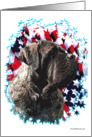 Brindle Mastiff with flag & stars card