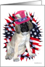 Patriotic Mastiff Pup & Flag card