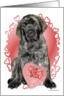 Brindle Mastiff pup with heart box card