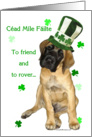 Cead Mile Failte Mastiff puppy card