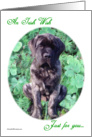 Brindle Mastiff puppy in clover card