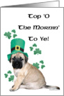 Fawn Mastiff puppy with shamrocks card
