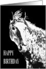 Silver Dream Horse - Birthday Card