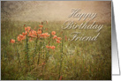 Happy Birthday Friend, Flowers in Field card