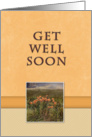 Get Well Soon, Flowers in Field card