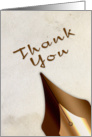 Thank You, Calligraphy Pen card