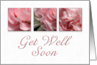 Get Well Soon, Pink Flower on White Background card