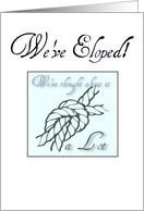 We've Eloped! card