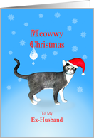For my ex-husband, Meowwy Christmas cat in a hat. card