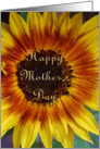Mother's Day Card, sunflower card