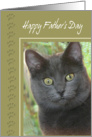 Father's Day-Cat and Paws card