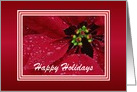 Happy Holidays-Poinsettia-Custom Card