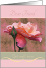 Dear Friend Get well soon Roses card