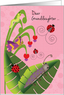 Granddaughter at Camp Cute Beetle Ladybugs Butterfly Inchworm card