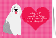 Great Granddaugher Baby's First Valentine's Day with Cute Dog on Pink card
