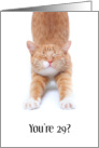 Funny Happy Birthday Stretching Yellow Cat card