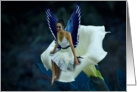 The Blue Fairy on a Moon Flower (blank inside) card