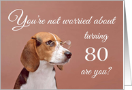 Happy 80th birthday, worried beagle card