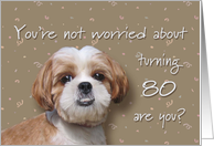Happy 80th birthday, worried dog card