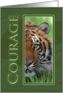 Courage Tiger - Cancer Patient Encouragement card