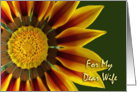 Nurses Day for Wife, Gazania Flower Up Close card