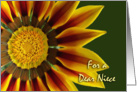 Nurses Day for Niece, Gazania Flower Up Close card