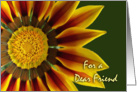Nurses Day for Friend, Gazania Flower Up Close card