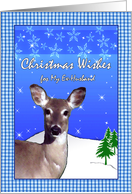 Christmas for Ex-Husband, Deer With Stars, Snowflakes, Blue Gingham card