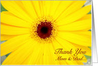 Thank You Parents,Yellow Gerbera Daisy card