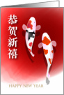 Chinese New year, carp card