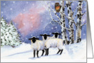 Christmas Eve Friends, Lambs, Owl in Snow card