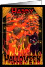 Halloween greetings from black cat and hot pumpkins card
