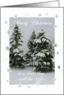 Merry Christmas/Son and his Wife-Snow covered trees. card