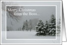 Merry Christmas from Employer/Snowscene with Trees card