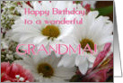 Happy Birthday to a wonderful GRANDMA! card