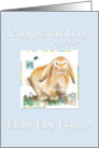 New Baby Boy-Chinese Astrology/Year of the Rabbit card