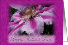 Clematis Mothers Day card