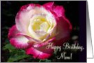 Birthday Mother Rose card