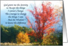 Colorful Autumn Trees Serenity Prayer Inspirational Card
