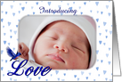 Bluebird Love And Hearts New Baby Birth Announcement Photo Card