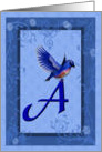 Bluebird And Flowers Letter A Monogram Any Occasion Blank Note Card