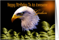 Happy Birthday ~ Godson ~ Eagle card