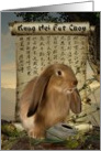 Kung Hei Fat Choy! -2011, Year of the rabbit, card