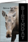 18th Birthday Advice - Stay out of Moosechief - Funny Birthday Card