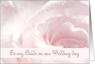 To my Bride - Wife - Wedding Day - Pastel Rose - Romantic card
