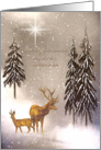 Merry Christmas Brother and Sister-in-law Winter Deer Pines Snow Stars card
